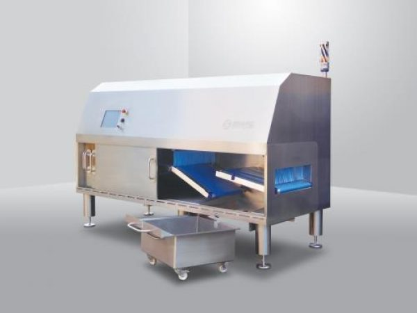 Large format food inspection system