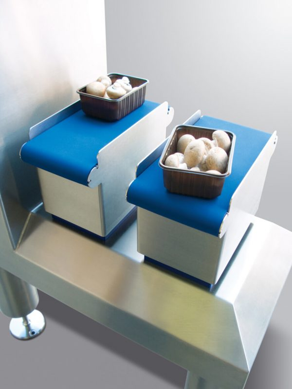 Pilze auf Mini-Kontrollwächter