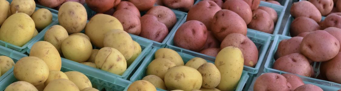 Wie Röntgen eine entscheidende Rolle bei der Gewährleistung der Lebensmittelsicherheit spielt